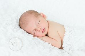 Neugeborenenfoto_Braunschweig_Wolfenbüttel_Fotoshooting_babybauch