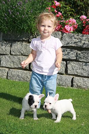 Kinderfotografie mit kleinen Hunden